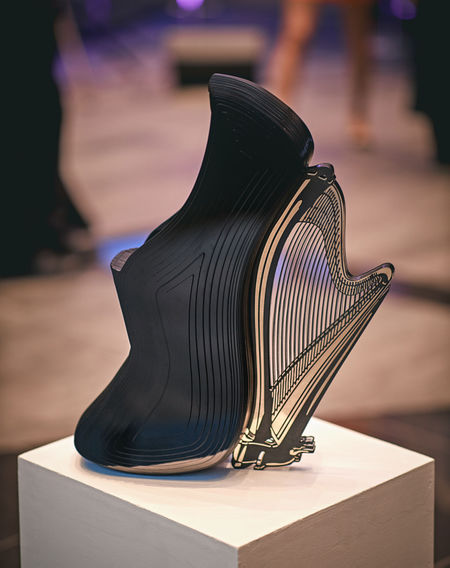 Harp Shoe Art Object